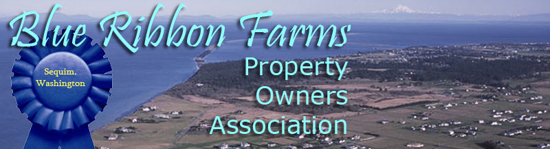 Blue Ribbon Farms Property Association